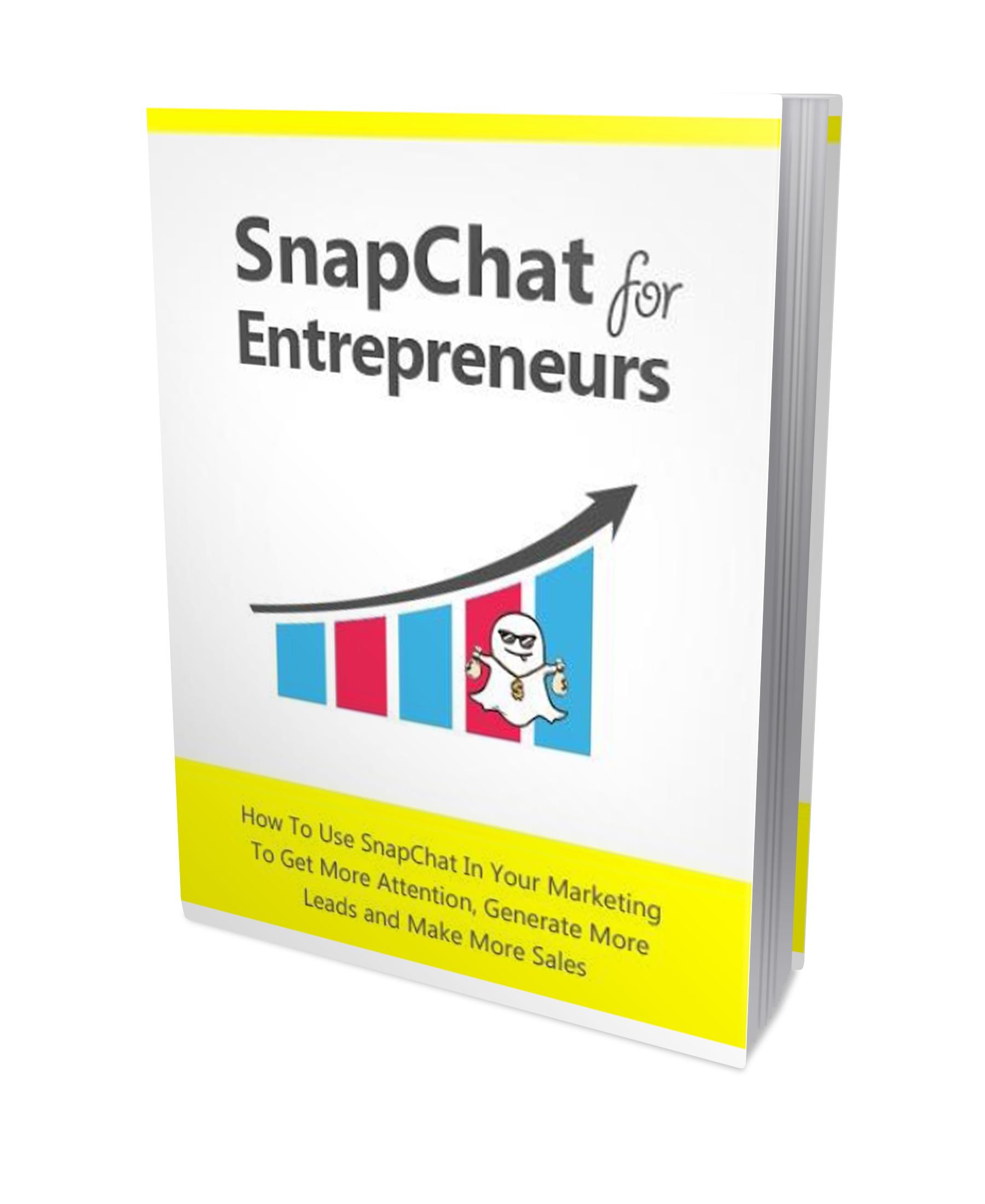 Snapchat for entrepreneurs cover